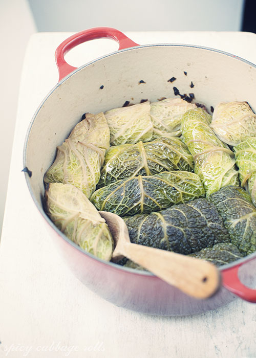 cabbage_rolls4_ssl